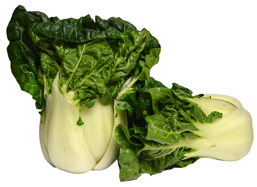 Baby Bok Choy Sprout 奶油苗Lb