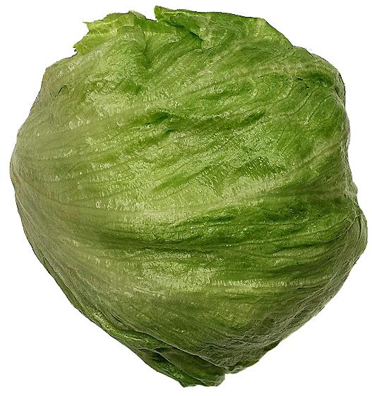Head Lettuce EA