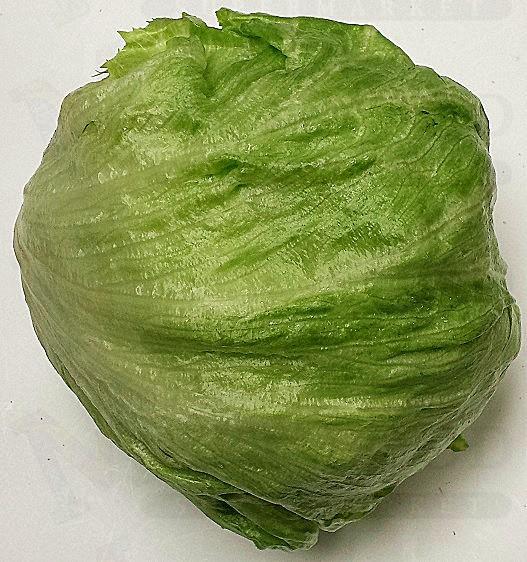 Head Lettuce 圆生菜 EA