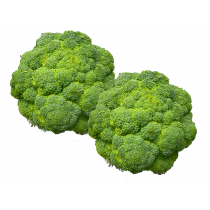 Broccoli 2PCS