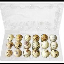 Quail Eggs 18pcs