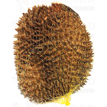 Frozen Durian 冰冻榴莲 1LB