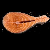 Salmon 1pcs