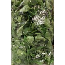Baby Spinach  菠菜苗   2lb/Bag